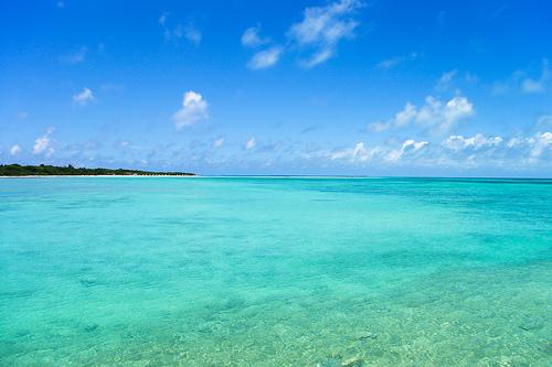 沖縄の画像 p1_17